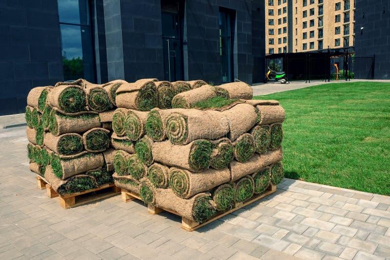 La pelouse roul?e d'herbe est pr?te pour la pose images stock
