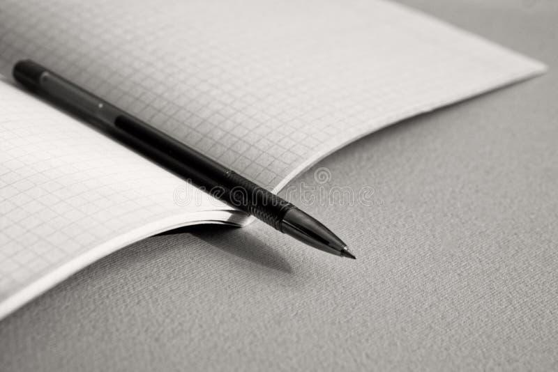 La penna si trova sul taccuino per matematica monotono fotografia stock