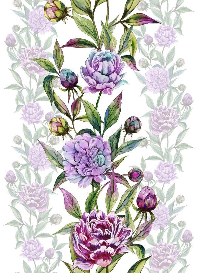 La peonía hermosa florece con los brotes y las hojas en líneas rectas en el fondo blanco Modelo floral inconsútil libre illustration