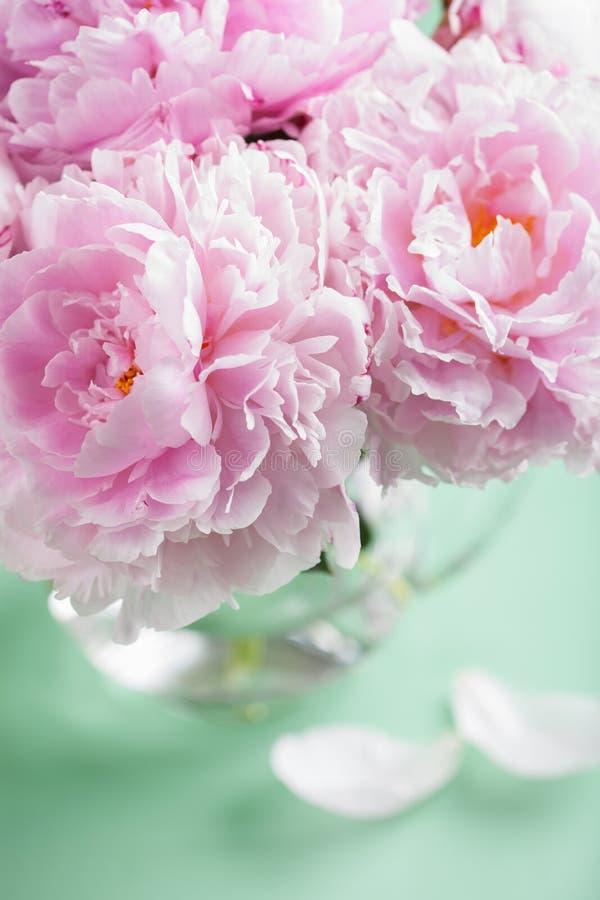 La peonía rosada hermosa florece el ramo en florero fotografía de archivo