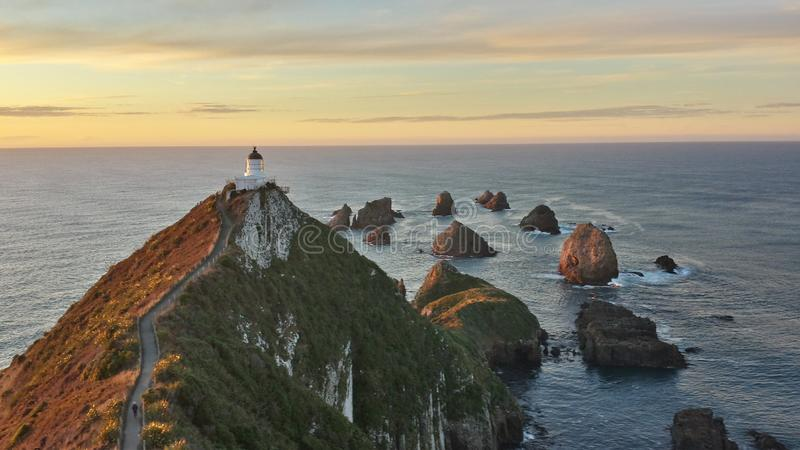 La pepita señala Nueva Zelanda foto de archivo libre de regalías