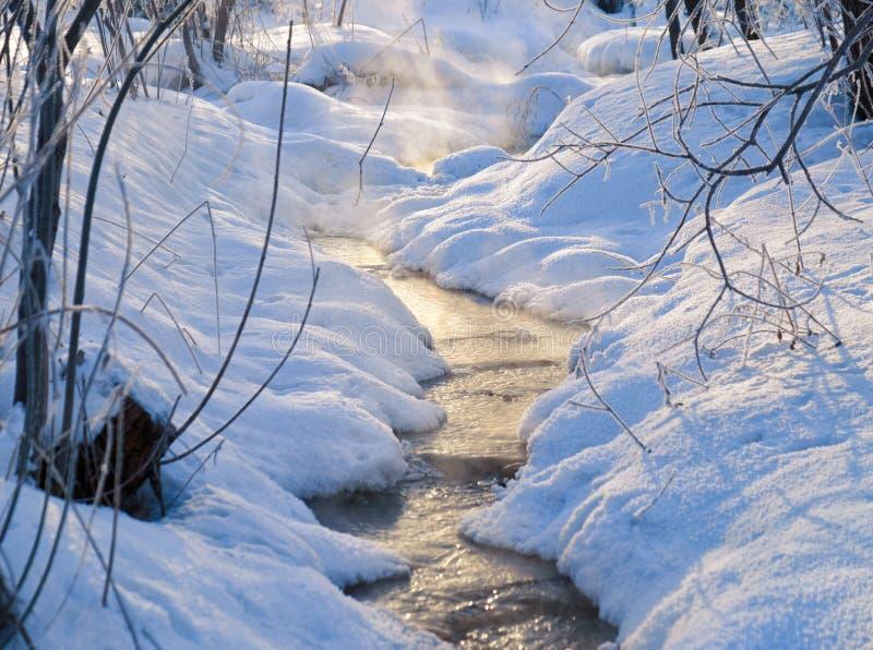 La pequeña corriente del invierno debajo de la nieve y el hielo en invierno sazonan imagenes de archivo