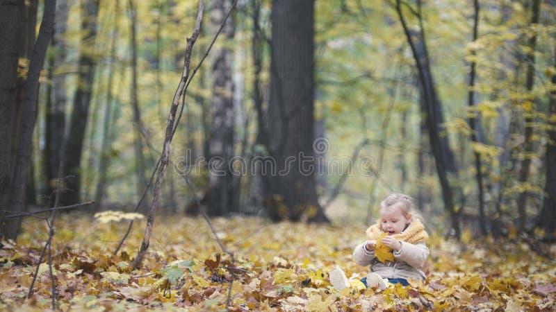 La pequeña hija juega con las hojas amarillas en el parque del otoño - la muchacha es feliz y de risa - granangular fotos de archivo libres de regalías