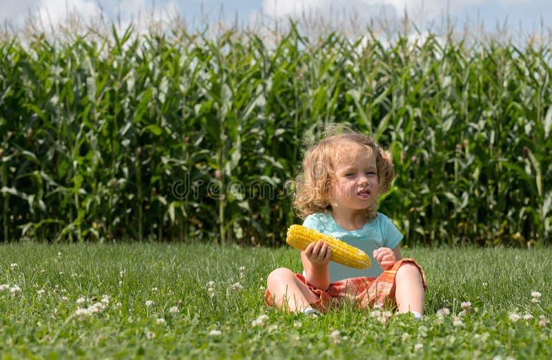 La pequeña muchacha caucásica rubia adorable se está sentando en el campo y está comiendo un maíz Los tallos del maíz están como  foto de archivo libre de regalías