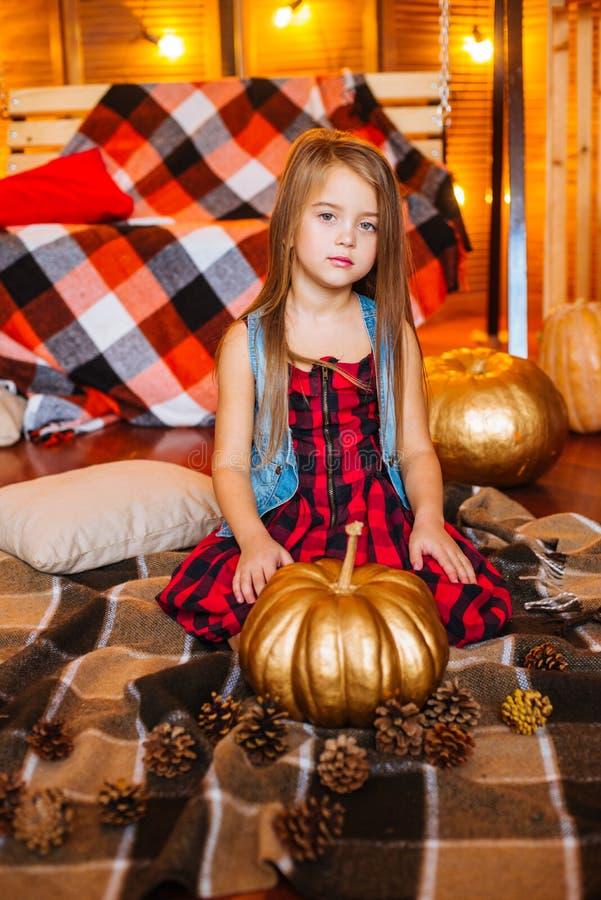 La pequeña muchacha linda con el pelo rizado largo cerca del oscilación y las calabazas en un rojo en una tela escocesa se visten imagen de archivo