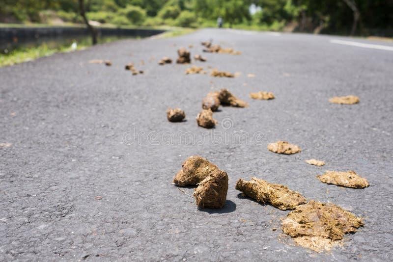 La pequeña pila de caballo cagó o poo en un camino lateral del país imagen de archivo libre de regalías