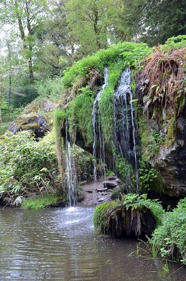 La pequeñas cascada y vegetación en lisonja se escudan el parque fotos de archivo libres de regalías
