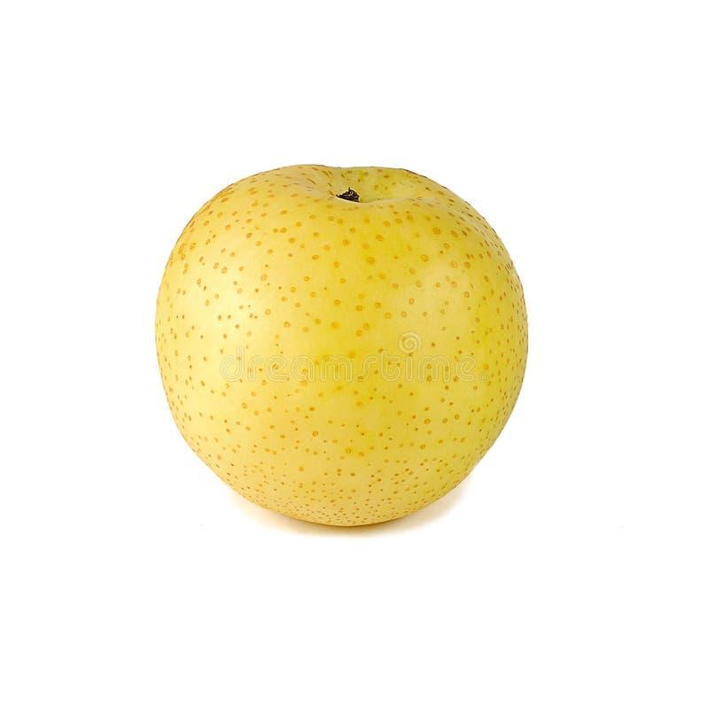 La pera asiatica isolata su fondo bianco immagine stock