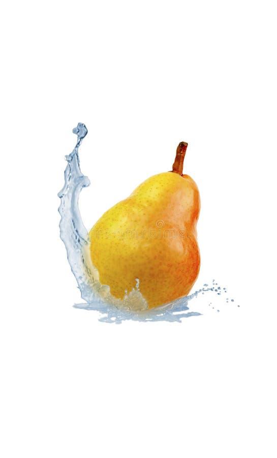 La pera cae en el agua salpica en un fondo blanco foto de archivo