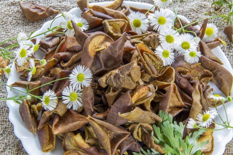 La pera marrón secada corta la placa blanca con las flores blancas Las flores de la margarita blanca y un ajenjo verde ramifican  imágenes de archivo libres de regalías