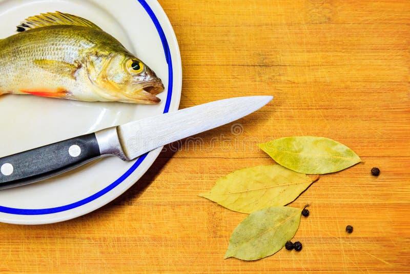 La perche mesur?e fra?che de poissons se situe dans le plat photo stock