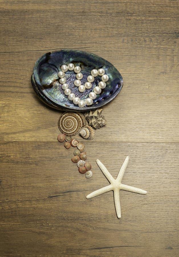 La perle blanche arrangent dans la forme de coeur dans la coquille de perle et le genre différent de coquille de mer et de poisso photo stock