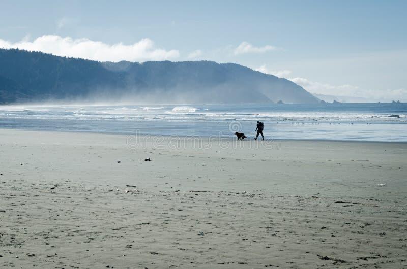 La persona camina su perro en la playa de California imagen de archivo