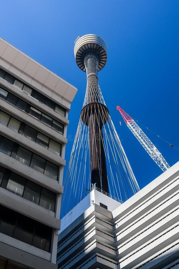 La perspectiva de la grúa y del centro de negocios de Sydney Tower fotografía de archivo libre de regalías
