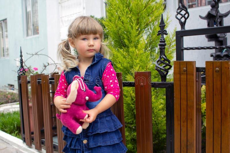 La petite belle fille marche avec un jouet mou dans leurs mains sur l'air ouvert photos stock