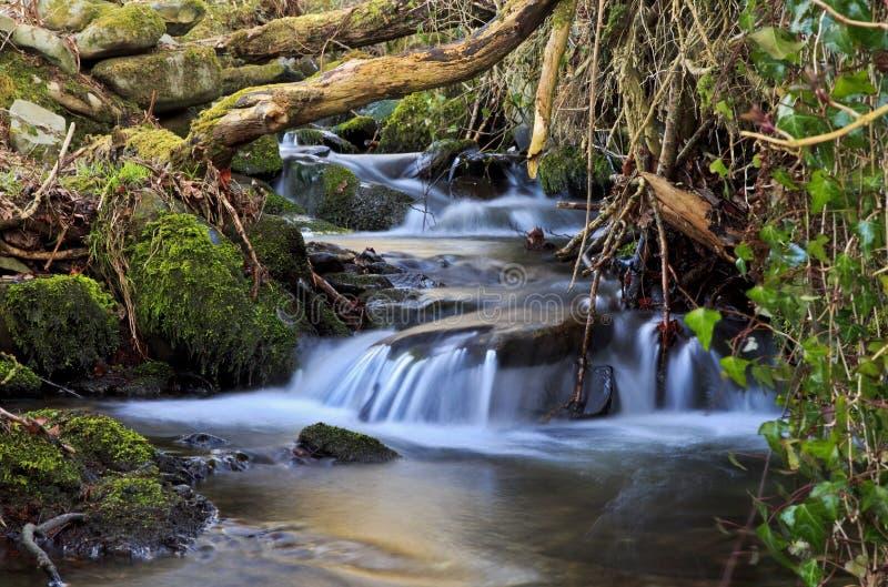 La petite cascade de l'eau au-dessus de la mousse a couvert des roches photo libre de droits