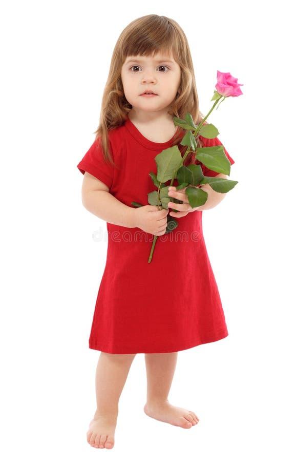 La petite chéri avec le rose s'est levée photos libres de droits