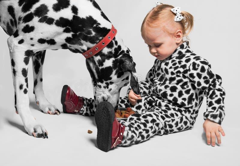 La petite fille alimente le Dalmate photo libre de droits