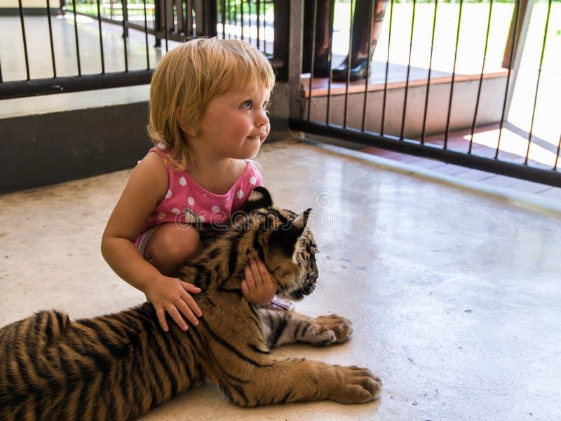La petite fille alimente un petit animal de tigre image libre de droits