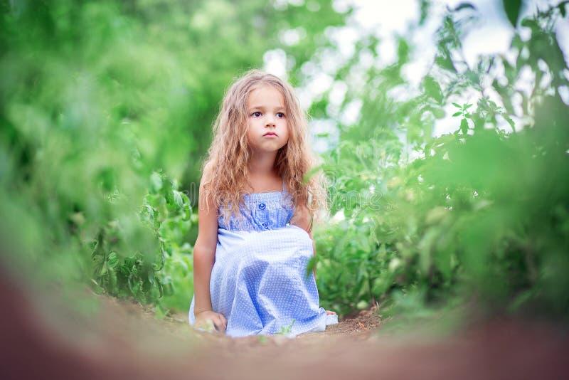 La petite fille dans un bain de soleil bleu s'assied dans une plantation des tomates et désire ardemment photo stock