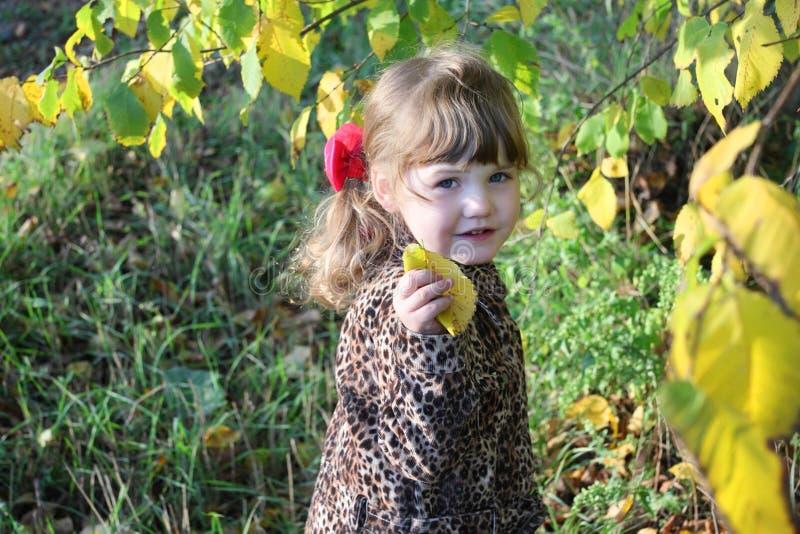 La petite fille heureuse tient la feuille à côté des arbres jaunes image libre de droits