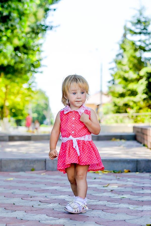 La petite fille marche en parc pendant l'été photographie stock
