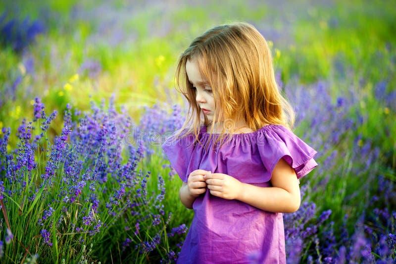 La petite fille mignonne heureuse est dans un domaine de lavande porte la robe lilas tenant le bouquet des fleurs pourpres images libres de droits