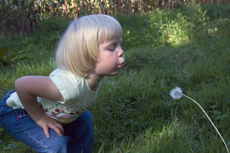 La petite fille souffle le dangelion image stock