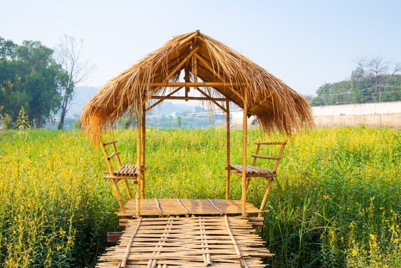 La petite hutte des matériaux de nature construisant dans le domaine de fleurs jaune de chanvre de Sunn dans le jour ensoleillé photos libres de droits