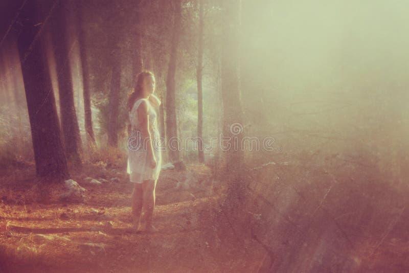 La photo surréaliste de la jeune femme se tenant dans l'image de forêt est texturisée et modifiée la tonalité Concept rêveur photos libres de droits