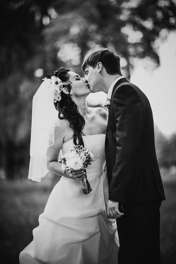 La photographie blanche noire épousant de beaux jeunes couples se tiennent sur la forêt de fond photographie stock