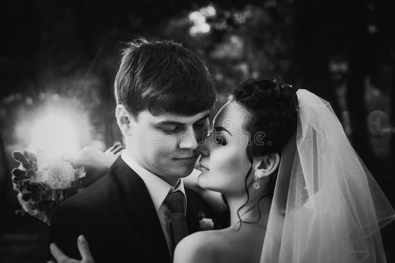 La photographie blanche noire épousant de beaux jeunes couples se tiennent sur la forêt de fond photos stock