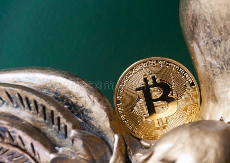 La pièce d'or Bitcoin se trouve et ne tombe pas dans une tirelire Symbolise la fin de 2017 image stock