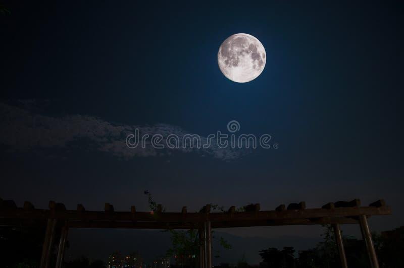 La più grande luna nella notte fotografia stock