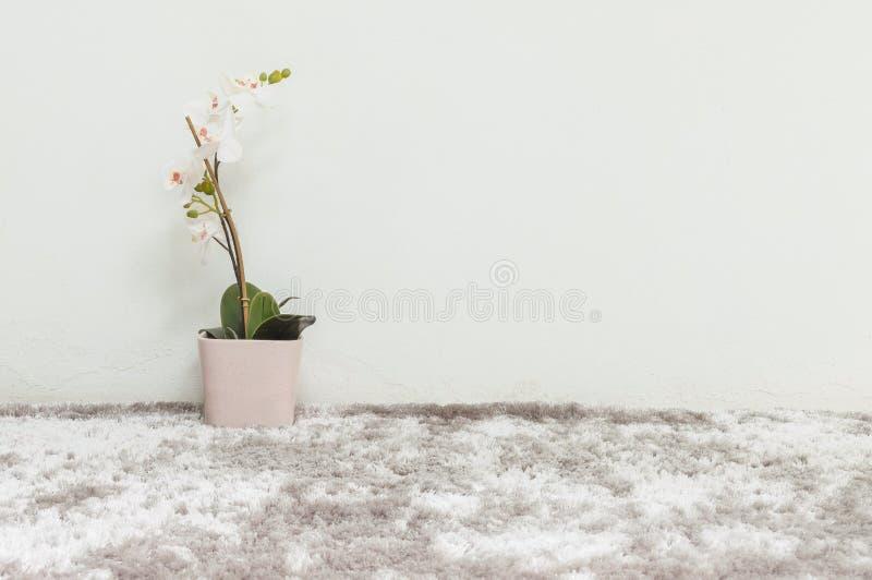 La pianta artificiale del primo piano con il fiore bianco dell'orchidea in vaso rosa sulla parete del cemento bianco e del tappet fotografia stock