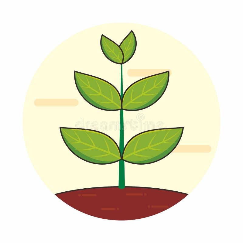 La pianta si sviluppa nell'illustrazione al suolo di vettore illustrazione di stock