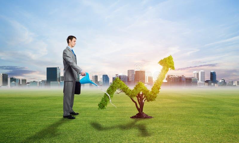 La pianta verde nella forma di di cresce la tendenza immagine stock libera da diritti