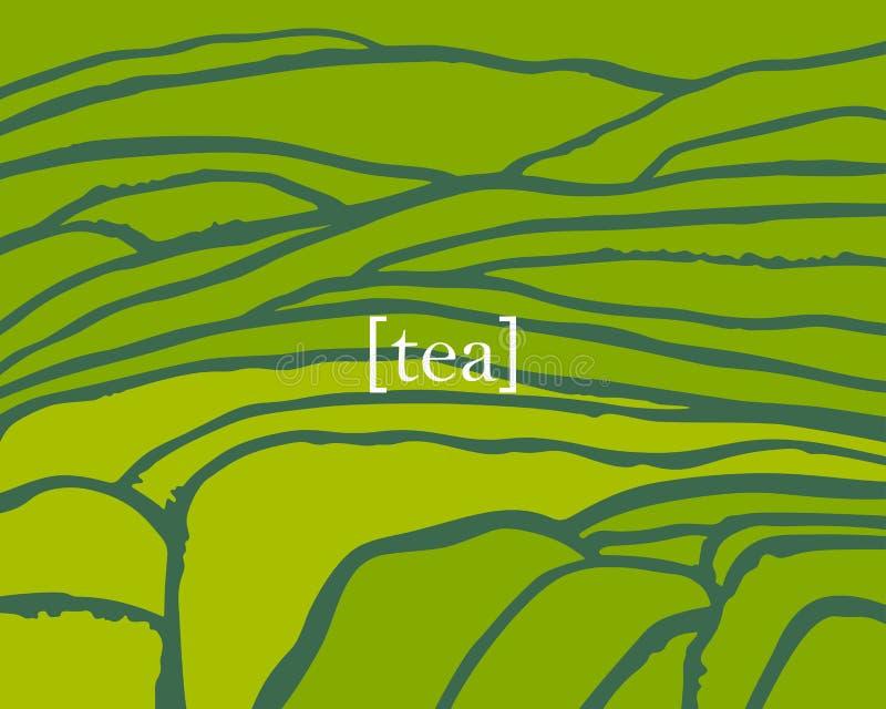 La piantagione di tè di vettore sulle cascate sistema Titolo del tè royalty illustrazione gratis