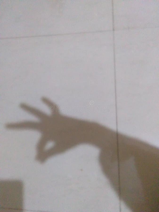 La PIC animale d'ombre photos libres de droits