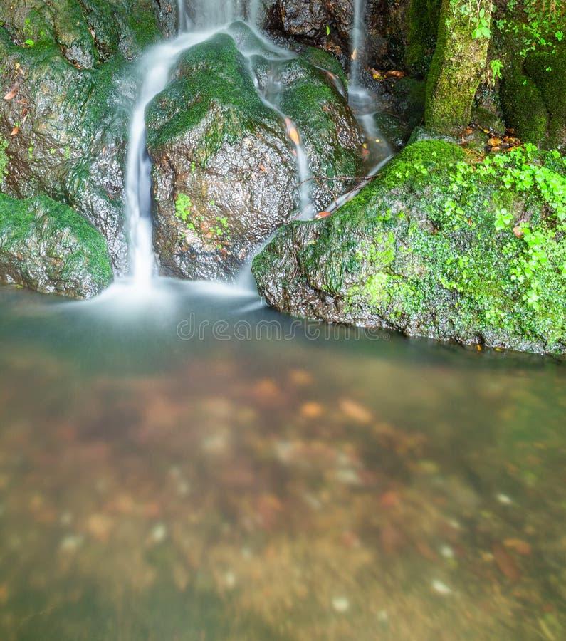 La piccola caduta serica dell'acqua che investe il muschio ha coperto le rocce fotografia stock libera da diritti