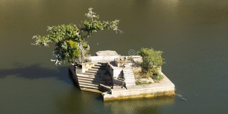 La piccola isola gradice un bonsai. fotografie stock libere da diritti