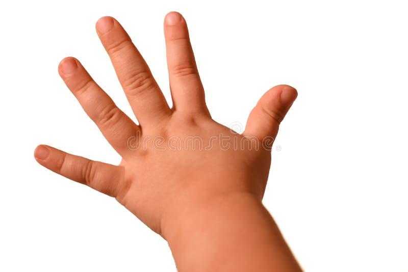La piccola mano isolata del bambino mostra i gesti differenti su un fondo bianco fotografia stock