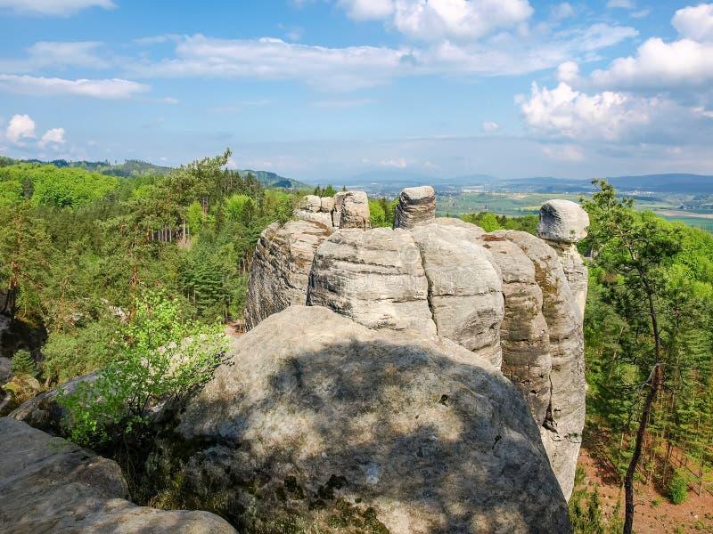 La piedra arenisca oscila entre bosque en el paraíso bohemio de la reserva, checo imagen de archivo libre de regalías
