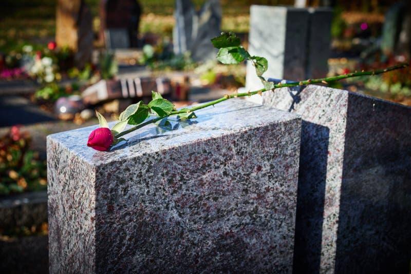 La pierre grave avec défraîchi s'est levée photos libres de droits