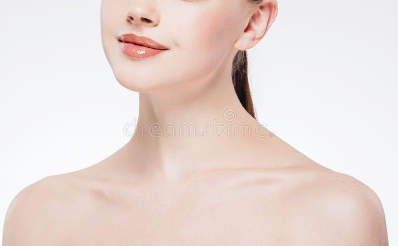 La pieza hermosa de la mujer de la barbilla y de los hombros de los labios de la nariz de la cara, la piel sana y ella en detrás  imagen de archivo libre de regalías