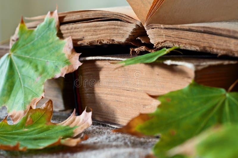 La pila de libros del vintage en hojas de arce del otoño se cierra para arriba foto de archivo libre de regalías