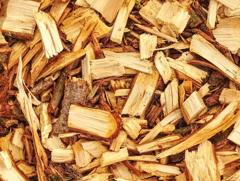 La pile des déchets de bois et la sciure peuvent être employées pour la fabrication de combustible organique photos libres de droits