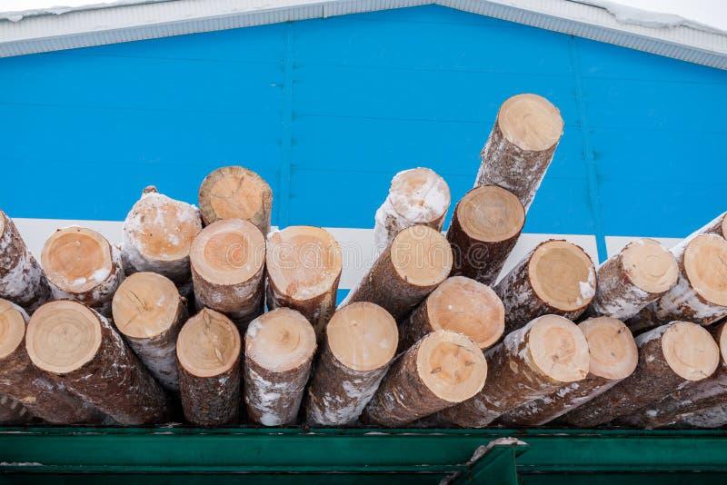 La pile des rondins sciés frais de pin se trouve sur le support vert sur le fond bleu de bâtiment industriel en hiver image libre de droits