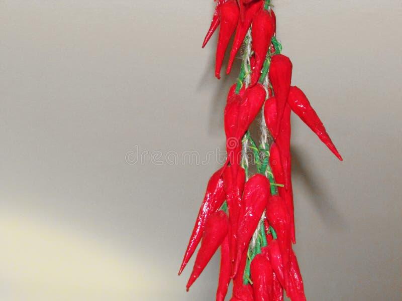 La pimienta roja foto de archivo