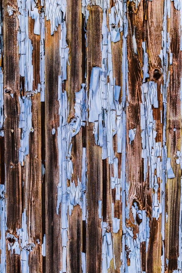 La pintura azul que se agrieta texturiza la peladura apagado de la superficie de la pared de madera fotografía de archivo libre de regalías
